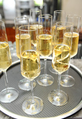 champagne or white wine for event catering