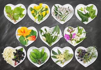 Alternativmedizin mit Heilpflanzen 5
