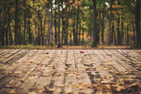 Wooden floor terrace over autumn forest background