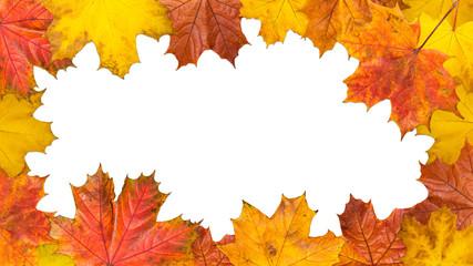 Frame made of bright maple leaves. Size 16Х9