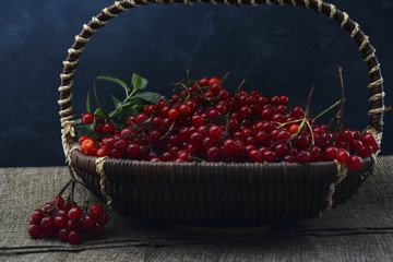 basket with berries of viburnum on the table