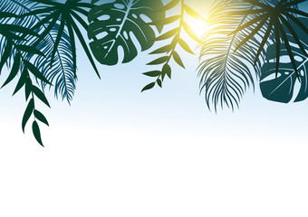 Summer concept design of tropical leaves with sunlight vector illustration
