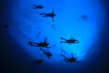 Scuba diving. Scuba divers underwater in ocean