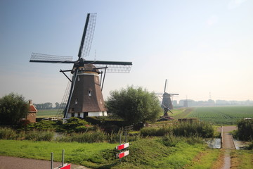 Windmills in the Tweemanspolder in Zevenhuizen