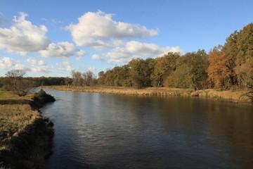 Goldener Oktober an der Mulde bei Dessau