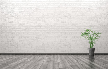 Empty interior with plant 3d rendering