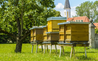 Bee hives in Bavaria, Germany