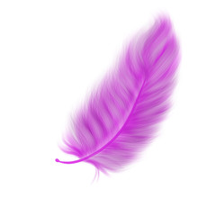 Hand drawn colorful pink feather on white background, isolated cartoon illustration painted by pencil and watercolor, high quality
