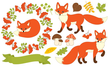 Vector Autumn Set with Foxes, Plants and Ribbon