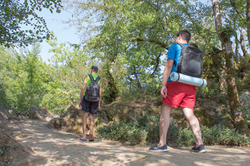 group of friends with a backpacks going up the path in the mountain forest, the concept of ecological active tourism