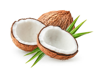 coconuts isolated on the white background