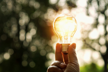 hand holding light bulb and sunset in nature, power energy concept