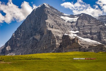 Majestic north face of Eiger mountain (3.967m - 13.015ft) and train to Jungfraujoch in the Bernese Alps in summer. Kleine Scheidegg, Bernese Oberland, Switzerland.