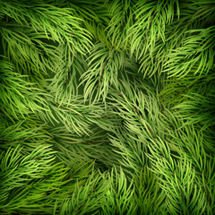 Christmas background from fir tree branches. EPS 10 vector