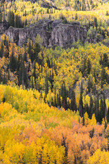 The Scenic Beauty of the Colorado Rocky Mountains in Autumn
