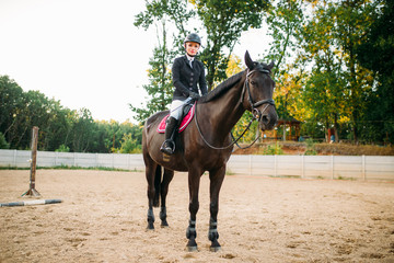 Equestrian sport, young woman sitting on horse