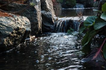 日本庭園を流れる川 / 和風イメージ