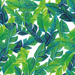 Wall Mural - Tropical palm leaves seamless background