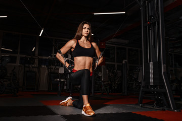 Athlete girl in sportswear working out and training her arms and shoulders with exercise machine in gym.