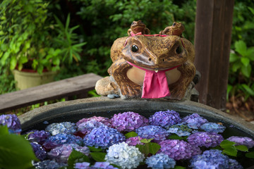 Frog statue on the edge of a small pond with purple flowers, Fushimi Inari Shrine, Kyoto, Japan