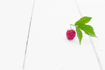 Red raspberry on the white wooden table. One raspberry