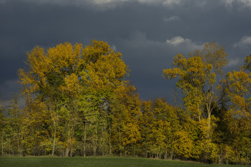 Stormy dark clouds over the trees and field. The fall scene