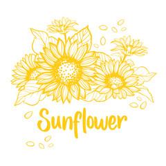 Sunflower. Sunflower card design. Vector illustration
