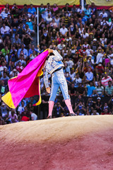 bullfighter making movements in front of the spectators in the arena