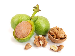 fresh walnuts in peel isolated on white background