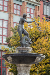 Historic Neptune Fountain, located at Long Market Street (Long Lane), in front of old buildings and tree in the autumn colors at the Main Town (Old Town) in Gdansk, Poland, in the autumn.