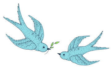 Swift birds vector hand drawn illustration. Sketch with couple of flying swallows with branch