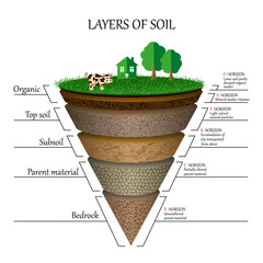 Layers of soil, education diagram. Mineral particles, sand, humus and stones, clay, natural fertilizer. Template for banners, page, posters, vector illustration.