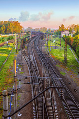 Wall Murals Deep brown Landscape with a view of the interwoven branches of the railway