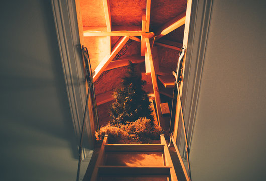 Christmas is waiting for you, a Christmas tree in the attic