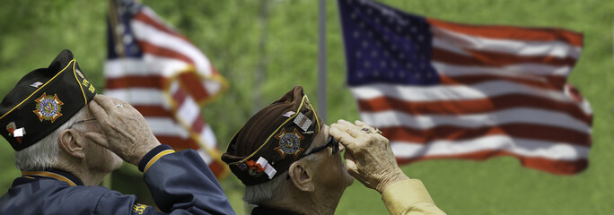 Veterans Saluting at a ceremony