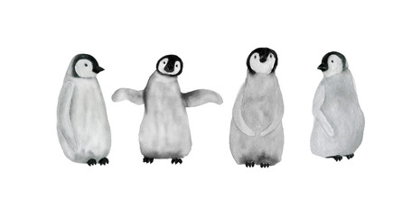 watercolor painting baby penguins