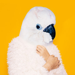 Contemporary art collage. White parrot in a white coat. Minimal fashion