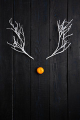 Christmas Holiday Concept - Reindeer Face made of Tangerine and Winter Tree Branches