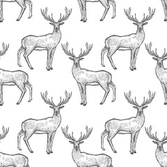 Seamless pattern with deer.