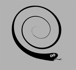 Cartoon snake illustration