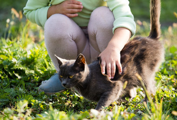girl stroking a cat in the park