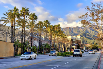 Palm tree lined avenue in Burbank, California.