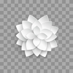 White paper 3d lotus isolated on transparent background