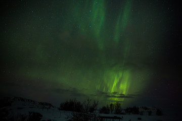 Polarlicht (Auroa borealis) über dem winterlichen Island
