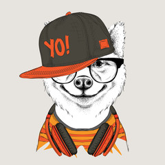 The poster of the sakita inu dog portrait in hip-hop hat and with headphones. Vector illustration.