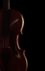 Musical instrument - violin isolated on black