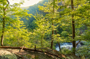 The view from the edge of a gorge with a waterfall in the Talladega National Forest in Alabama, USA