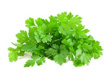 Fresh parsley bunch