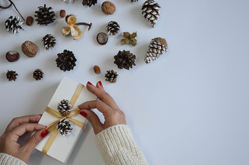 Preparing for Christmas. Christmas crafts, pine cones, chestnut, white background. View from above