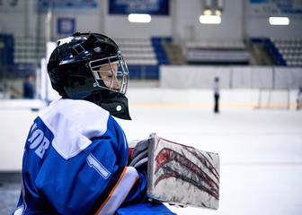 dynamic game hockey